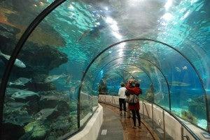 acuario de barcelona