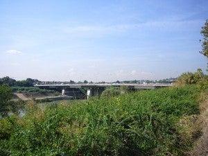 Ponte viale Marconi, Roma