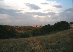 Via Trionfale e parco Pineto, Roma