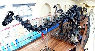 Parkings en el Museo de Ciencias Naturales de Madrid in Parclick